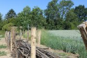 Lutte contre l'érosion des sols en zone agricole - zone Harduémont